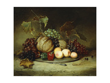 Bountiful Still Life