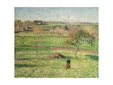 Bazincourt Prairie  Autumn