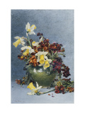 Daffodils and Wallflowers in a Green vase