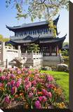 Chinese Tea House in the Chinese Garden  Luisenpark  Mannheim  Baden-Wuerttemberg Germany