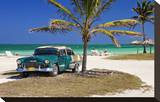Chevrolet Classic Car under a Palm Tree on the Beach of the Island of Cayo Coco  Cuba