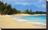 Baldwin Beach Park near Paia  Island of Maui  Hawaii  USA