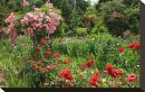 Claude Monet's Garden in Giverny  Department of Eure  Upper Normandy  France