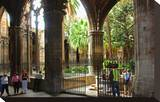 Cloister of Catedral La Seu in the Barri Gotic  Barcelona  Catalonia  Spain
