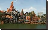 Big Thunder Mountain Train in the Frontier Land  Disneyland Park Paris  Ile-de-France  France
