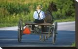 Amish driving a horse-drawn cart  Pennsylvania  USA
