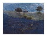 Wilder Lavendel