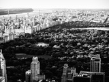 Central Park in the Summer and Sunset  Landscape  Manhattan  New York  Black and White Photography