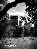A Summer in Central Park  Manhattan  New York City  Black and White Photography