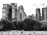 Landscape  a Summer in Central Park  Lifestyle  Manhattan  NYC  Black and White Photography