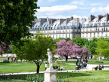 Garden of the Tuileries  the Louvre  Paris  France