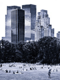 A Summer in Central Park  Lifestyle  Manhattan  NYC  Blue Light Black and White Photography