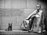 Statue of Franklin Roosevelt with His Dog  Memorial Franklin Delano Roosevelt  Washington DC