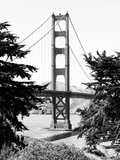 Landscape  Golden Bridge  Black and White Photography  San Francisco  California  United States
