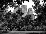 Place for Lovers in Central Park  Manhattan  New York City  Black and White Photography