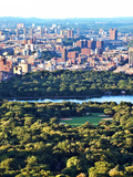 For a Baseball Field in Central Parc at Sunset  Manhattan  New York City  United States