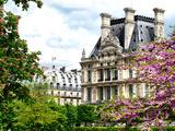 Garden of the Tuileries  the Louvre  Paris  France