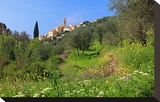 View of the Medieval Old Town of Cervo  Province of Imperia  Liguria  Italy