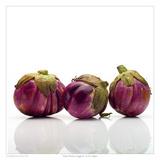 Italian Heirloom Eggplant