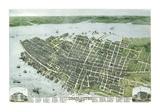 Bird's Eye View of the City of Charleston  South Carolina  1872