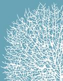 Aqua Coral I