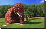 Flower Elephant in Maximilianpark  Hamm  North Rhine-Westphalia  Germany
