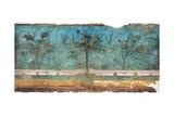 Summer Triclinium: Garden Paintings  20  1st Century  Mural