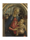 Virgin and Child (the Madonna of the Roses)