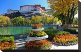 Floral Decorations at the Small Pond with Potala Palace seen from the North
