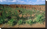 Landscape called Little New York  Ethiopia