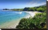 Hamoa Beach Park near Hana  Island of Maui  Hawaii  USA