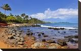 Kanaha Beach Park near Paia  Island of Maui  Hawaii  USA