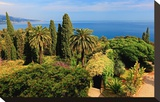 Hanbury Botanic Gardens near Ventimiglia  Province of Imperia  Liguria  Italy