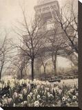 Eiffel in Springtime