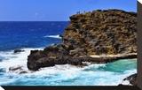 Halona Beach Cove  Island of Oahu  Hawaii  USA