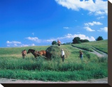 Haymaking near Trakai  Lithuania  Baltic States