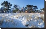 Houses on the Beach  Seaside Resort of Binz  Island of Ruegen  Germany