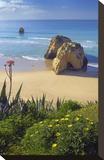 Praia da Rocha on the Coast between Portimao and Alvor  Algarve  Faro  Portugal