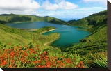 Montbretias in bloom at the caldera lake Lagoa do Fogo  Sao Miguel Island  Azores  Portugal