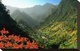 Mountain scenery and the village of Cruzinhas  Madeira Island  Portugal