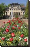 Orangery in the palace garden of Fulda  Hesse  Germany
