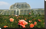 Palm house in the Royal Botanic Gardens  Kew  London  South of England  Great Britain