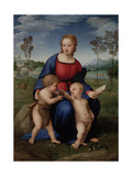 Madonna with Child and the Infant John the Baptist (Madonna of Goldfinch)