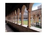 Cloister of San Zeno Maggiore Basilica  Verona  Italy c 12-13th c