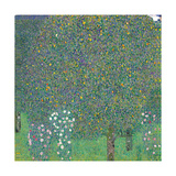 Rosebushes Under the Trees  by Gustav Klimt  1905 Musee d'Orsay  Paris  France
