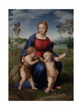 Madonna with Child  & Infant John the Baptist (Madonna of Goldfinch)
