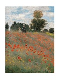 Poppy Field  by Claude Monet  1873 Musee d'Orsay  Paris  France Detail