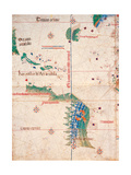 Map of South America and the Coastline of Brazil with parrots  1502  Estense Library Modena  Italy