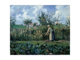Pissarro Camille  The Cutting of the Hedge  1878 Palazzo Pitti  Florence  Italy Detail