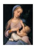 Madonna Campori (Madonna and Child)